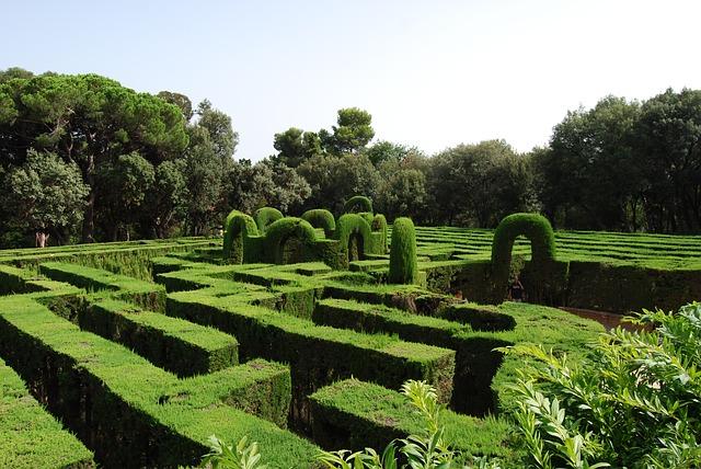 zelené bludiště