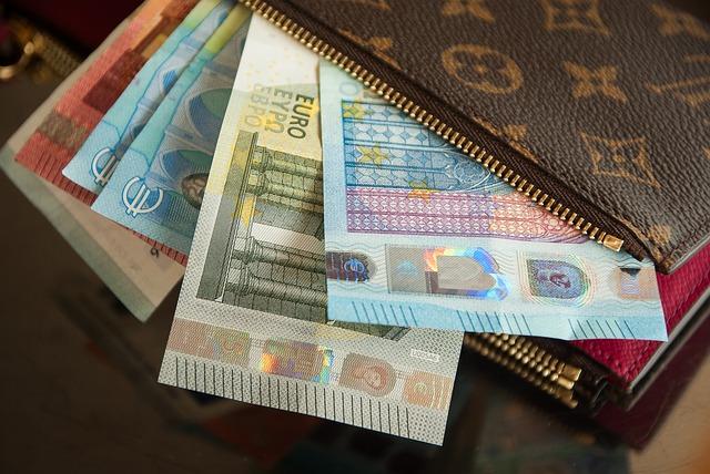 peněženka vuitton a eura.jpg